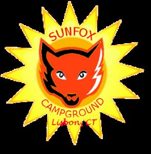 fox head with sun transparent Lisbon under
