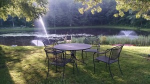 table at pond
